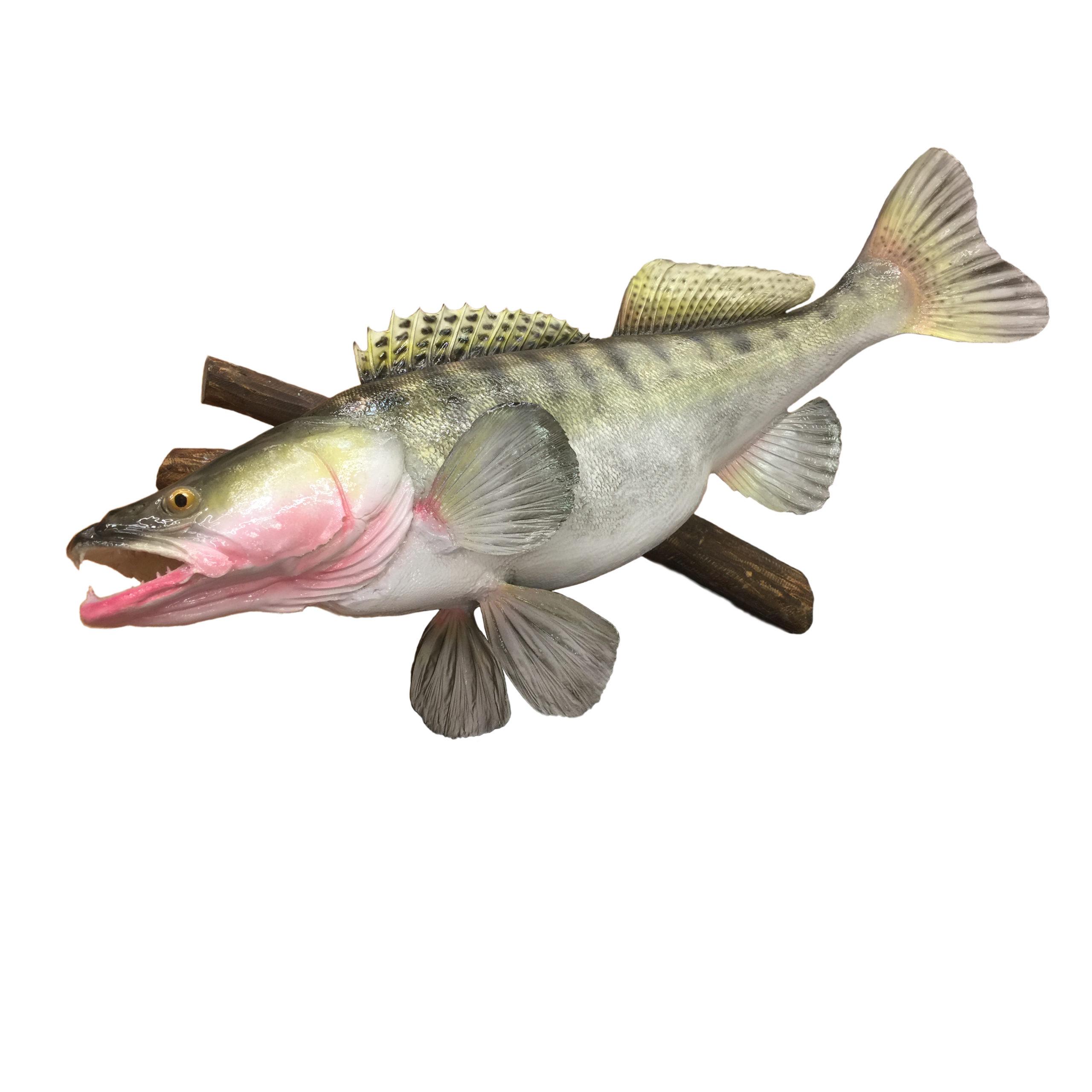 Панно рыбы